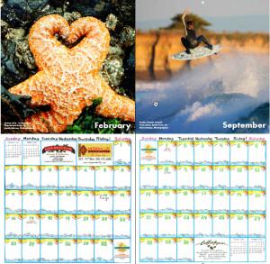 Fényképes naptárok